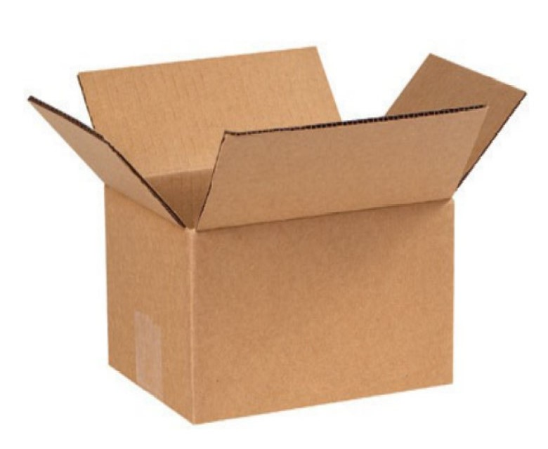 12 Bottle Pulp Package Carton