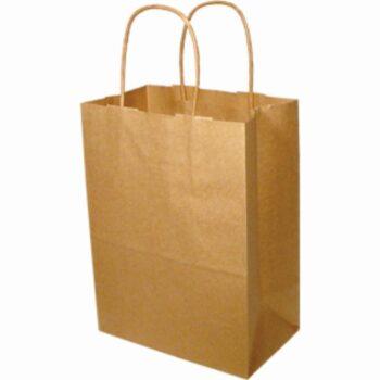 Paper Handle Bags (Tempo) - Kraft