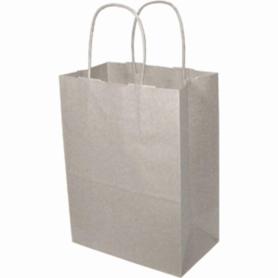 Paper Handle Bags (Tempo) - White
